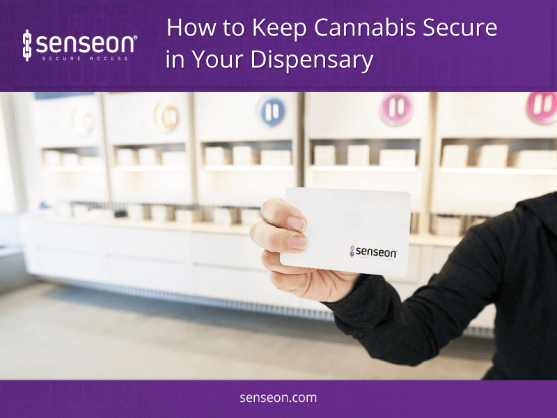 How to Keep Cannabis Secure in Your Dispensary